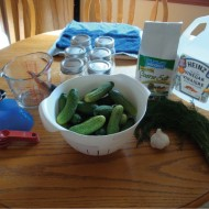 A Beginner's Guide to DIY Canning: Part One