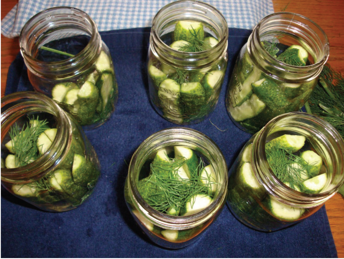 A Beginner's Guide to DIY Canning by Erin Heard for The DIY Mommy