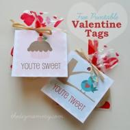 """Free Printable """"Sweet & Tweet"""" Valentine's Day Tags"""