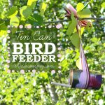 Tin Can Bird Feeder from The DIY Mommy