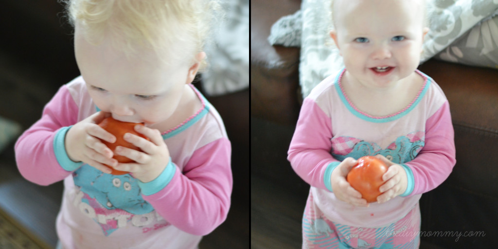 California Tomato Farmers Field Grown Tomatoes - The DIY Mommy