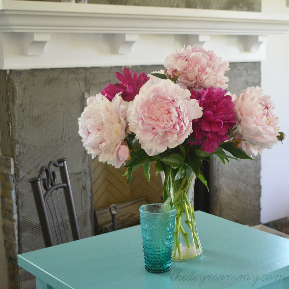 Our-DIY-House-Peonies---The-DIY-Mommy