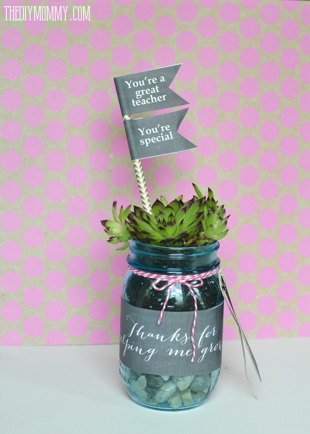 DIY Succulent Mason Jar Teacher Gift with Free Printables