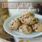 Cranberry Oatmeal Cookies by The DIY Mommy