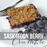 Saskatoon Berry Crumble Recipe