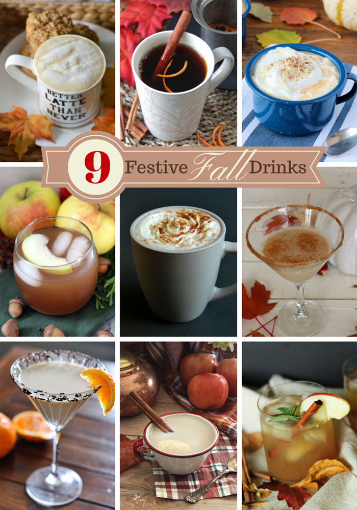 9 Festive DIY Fall Drink Ideas