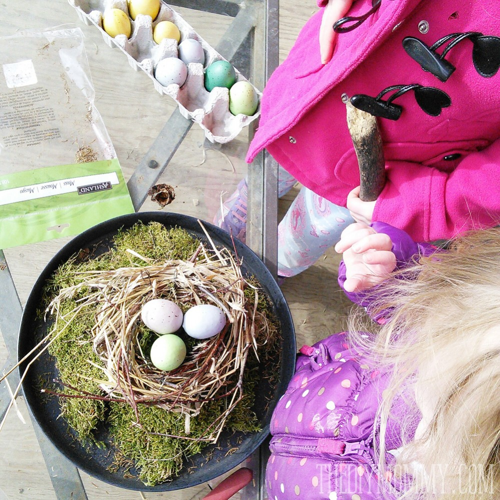 How to make a Spring bird's nest cloche