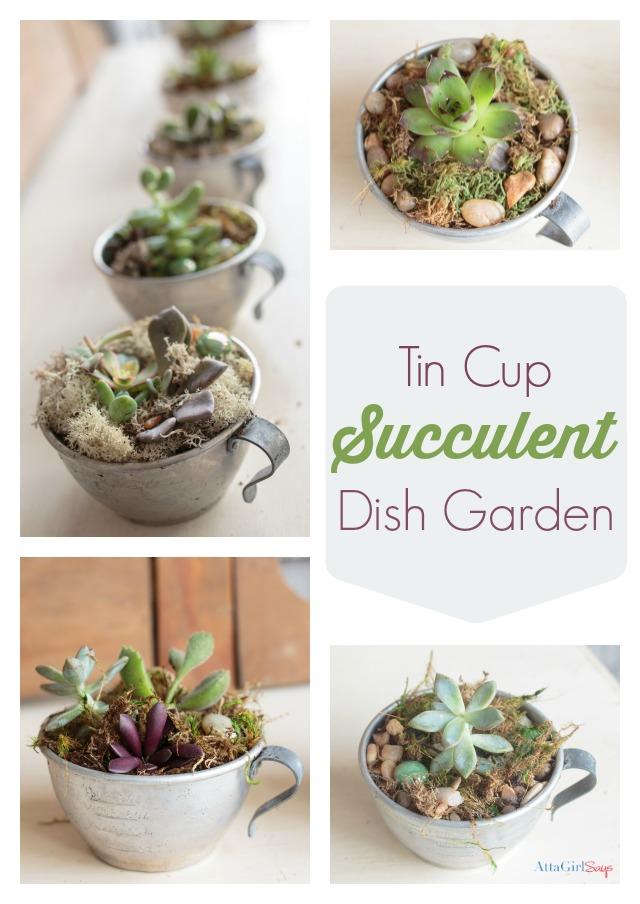 tin cup succulent dish garden motivational monday 45 craft diy