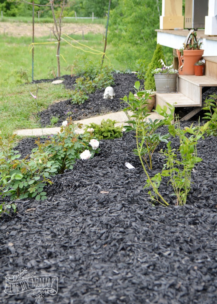 Create a low maintenance flower bed our front yard for Creating a low maintenance garden