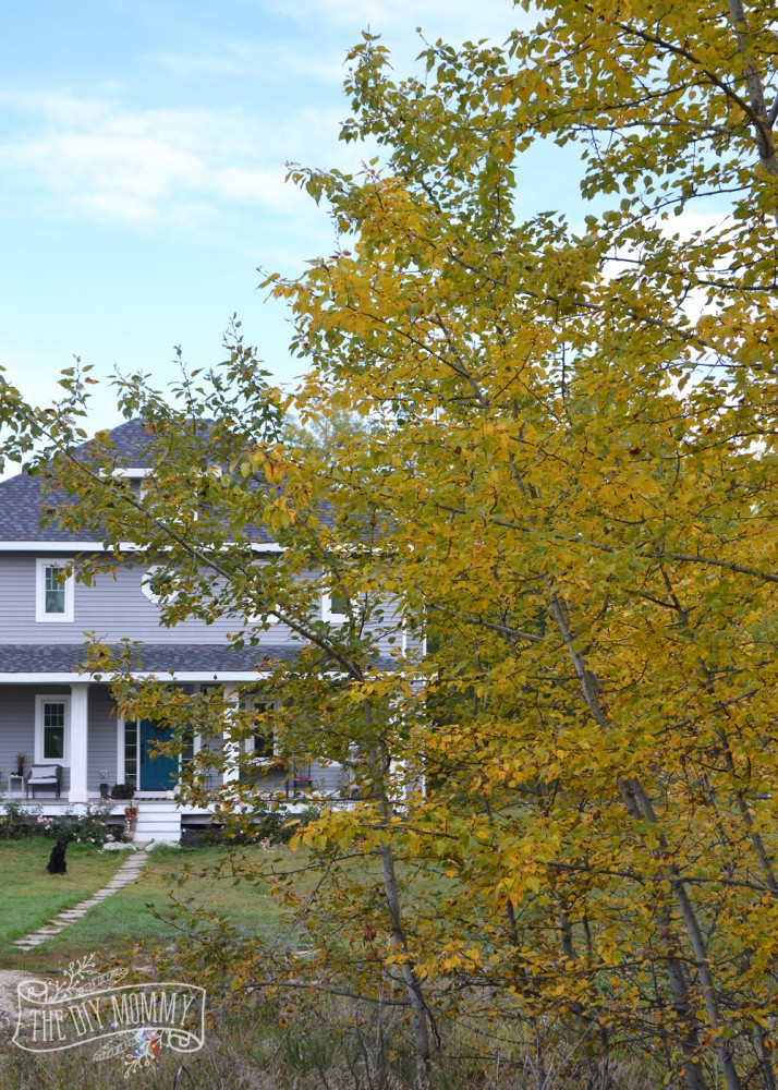 Foursquare home in Alberta, Canada in the Fall