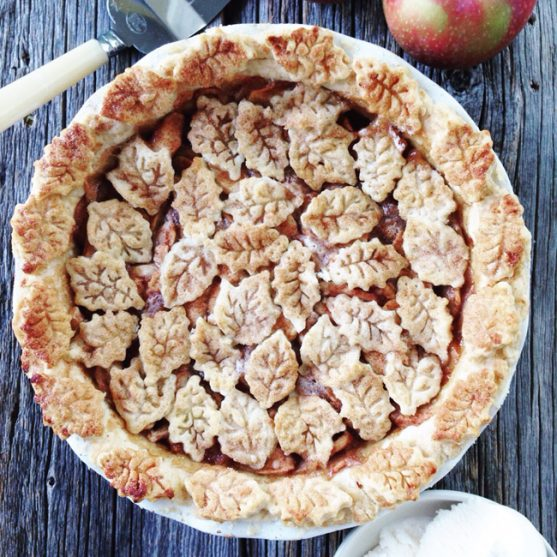 The Best Apple Pie from A Pretty Life in the Suburbs