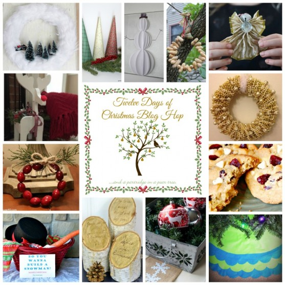 12 Days of Christmas Blog Hop 15 Talented Bloggers are getting together to share some inspiring Christmas Creations! Check out these DIY projects, Recipes, and Gift Ideas!!! #12DaysOfChristmasBlogHop