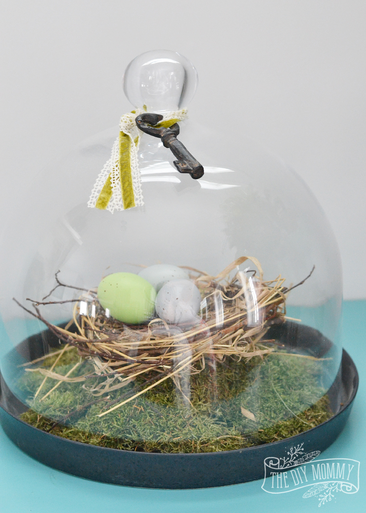 A DIY bird's nest in a cloche for Spring decor