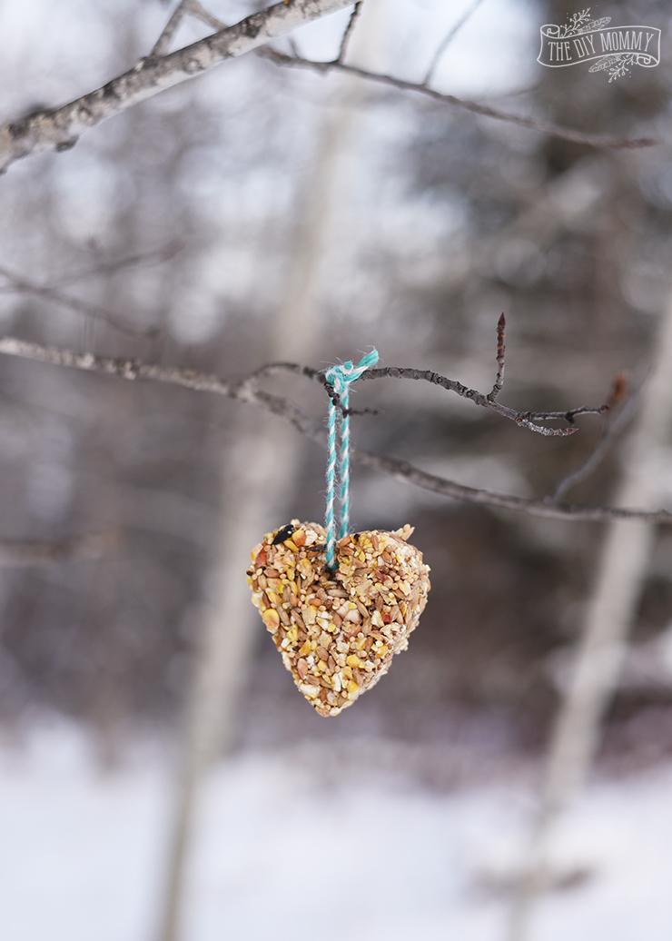 How to make a DIY bird feeder ornament - video
