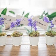 Dollar Store Lavender Place Card Holders for Spring