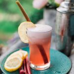 Strawberry Rhubarb Gin Fizz summer cocktail recipe