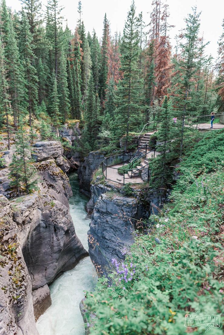 Maligne Canyon Hike in Jasper National Park