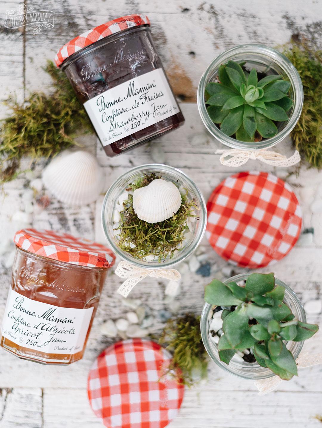 Make Diy Tiny Terrariums From Jam Jars The Diy Mommy