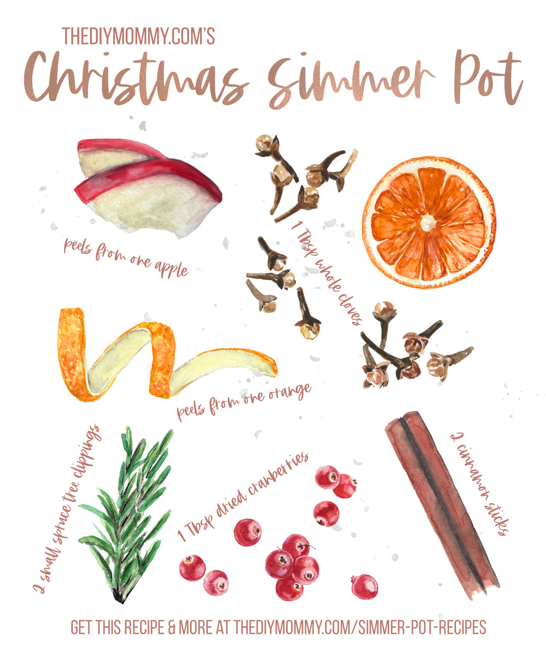Combine these ingredients in 2 cups of simmering water to create a beautiful Christmas scent in your home. Full recipe at thediymommy.com