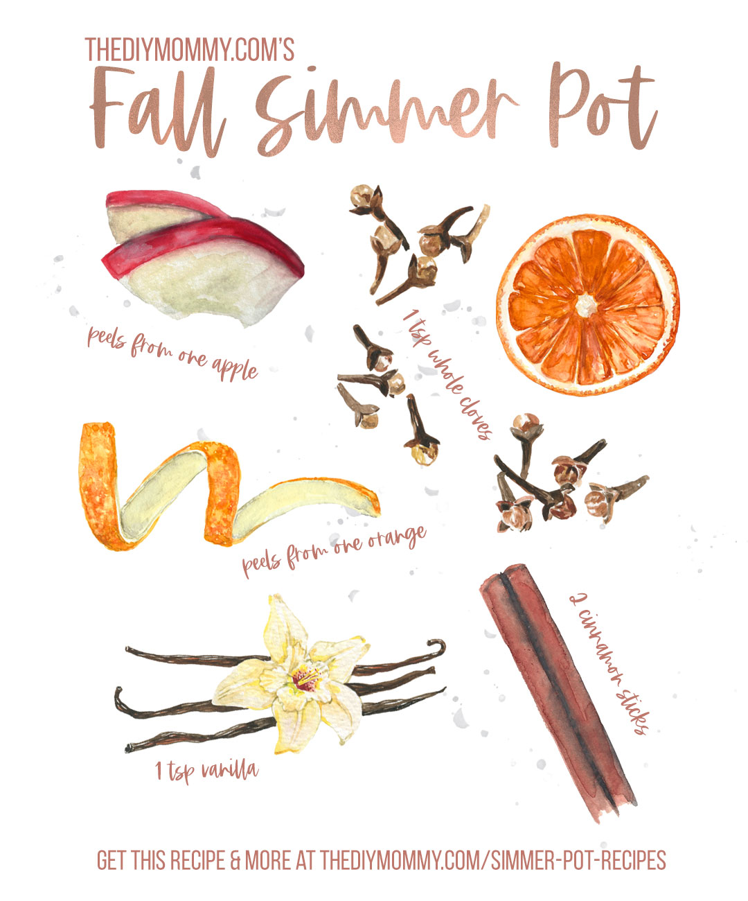 Combine these ingredients in 2 cups of simmering water to create a beautiful Fall scent in your home. Full recipe at thediymommy.com