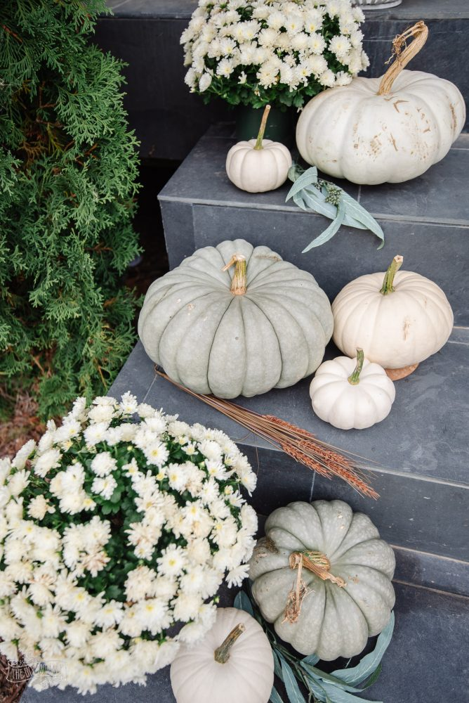 Use these helpful tricks on how to make real pumpkins last longer, whether for decoration or for eating!