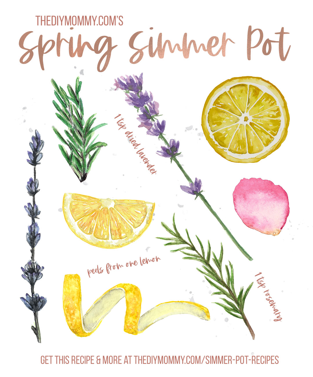 Combine these ingredients in 2 cups of simmering water to create a fresh, clean Spring scent in your home. Full recipe at thediymommy.com
